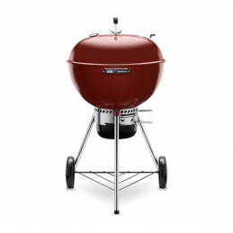 BARBECUE WEBER charbon...